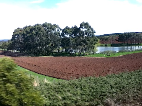 ploughed chocolate soil